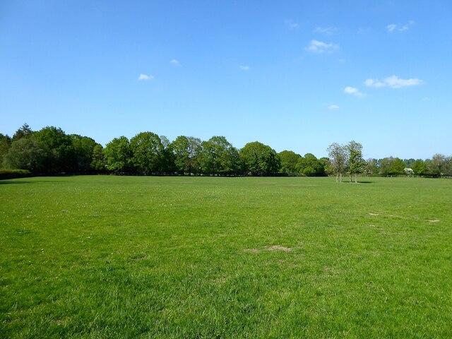 Lodge Field/Square Field