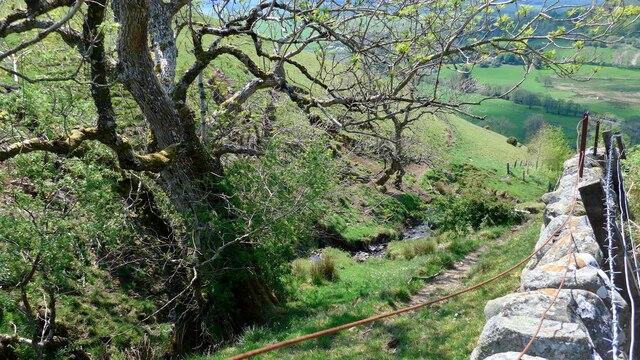Looking down the Kildoach Burn