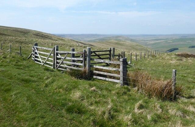 Interesting arrangement of gates
