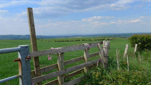 Gate and fields at Guiltree Hill