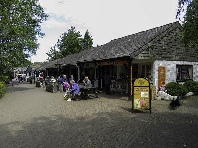Shops at Trago Mills