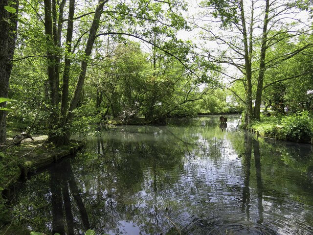 Duck pond at Trago Mills