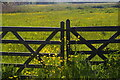 TM3957 : Gate onto marshes, Snape by Christopher Hilton