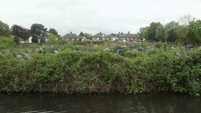 Stockton Heath allotment gardens