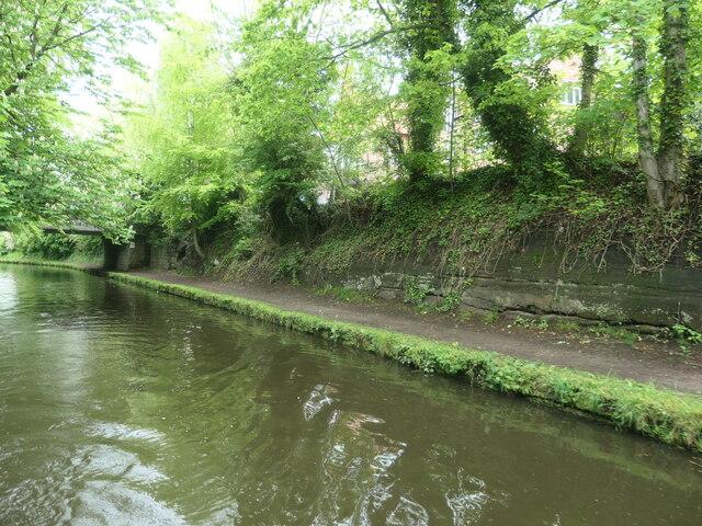 Cutting on the Bridgewater Canal, Lymm