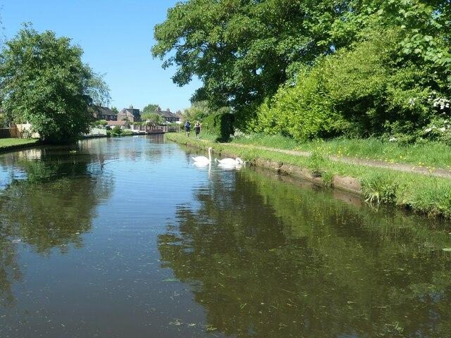 Bridgewater Canal, west of Lumb Brook Road
