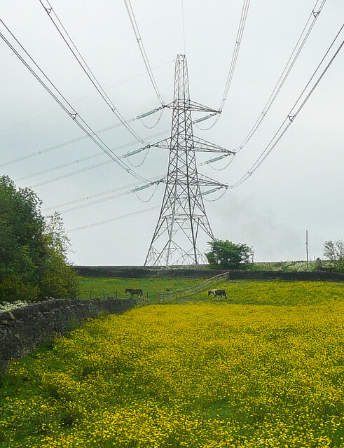 Power lines and pylon, Coley