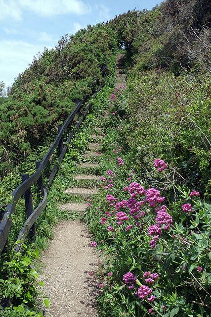 South West Coast Path above Jennycliff Bay