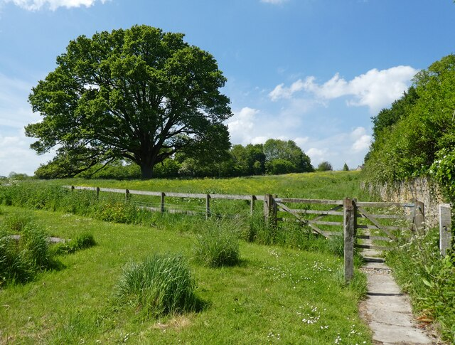 Path to Kennel Lane