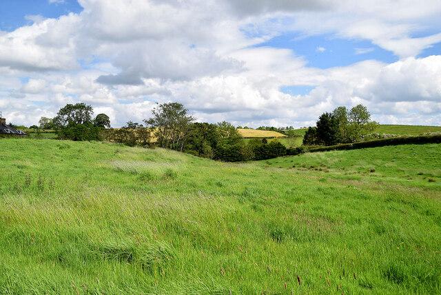 Drumragh (McCausland)