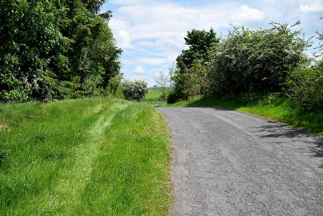 Wide grass verge along Drumragh Road
