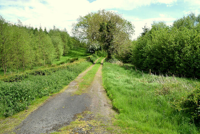 Lane to fields, Freughmore