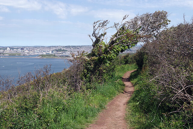 South West Coast Path below Staddon Heights