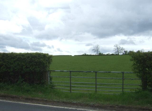 Field entrance off the B7081 near Holm Bridge