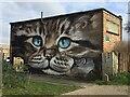SP3264 : Cat, south Leamington street art 1/2 by Robin Stott