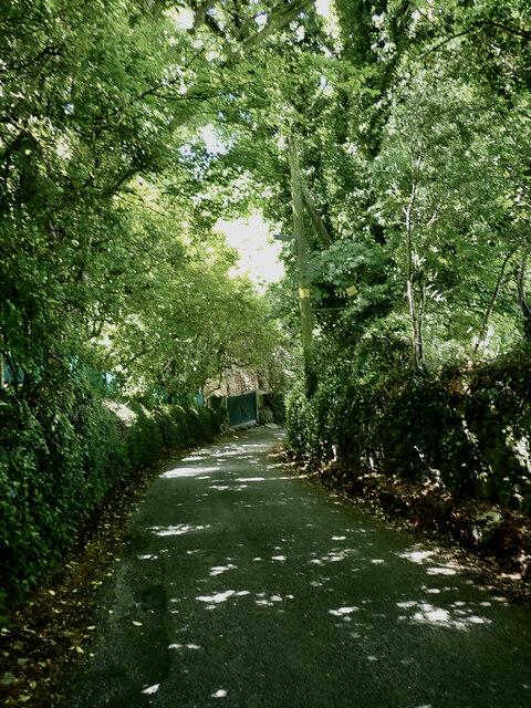 Tullybrannigan Road between Bryansfrod Road and Priest's Bridge