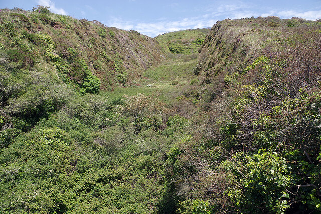 Ditch above Fort Bovisand