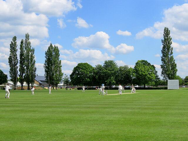 Cottenham: league cricket