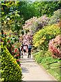 SJ8383 : The Pleasure Garden at Quarry Bank by David Dixon