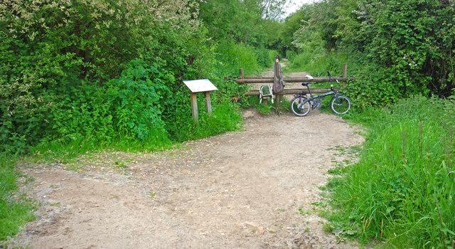 Blocked Cycleway
