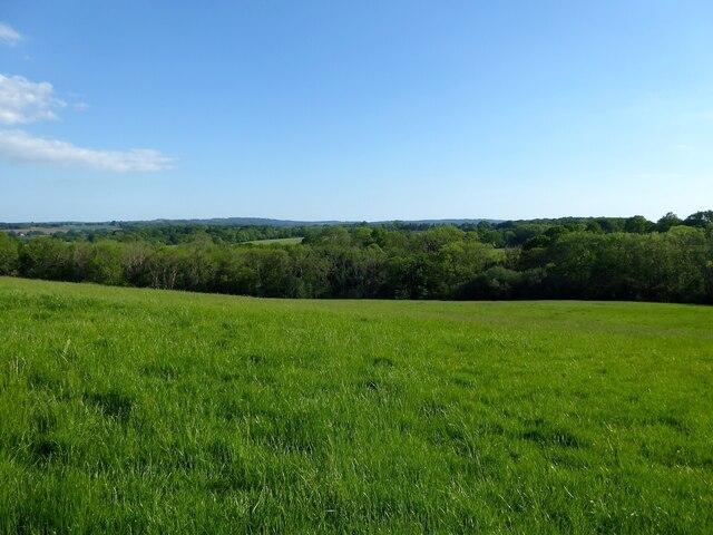 Fourteen Acre Field