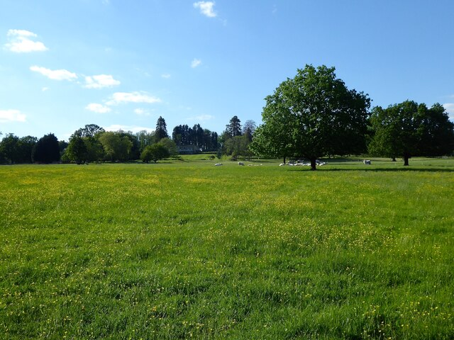 Highfields Park (2)