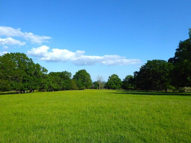 Highfields Park (3)