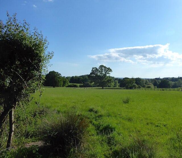 Barn Mead