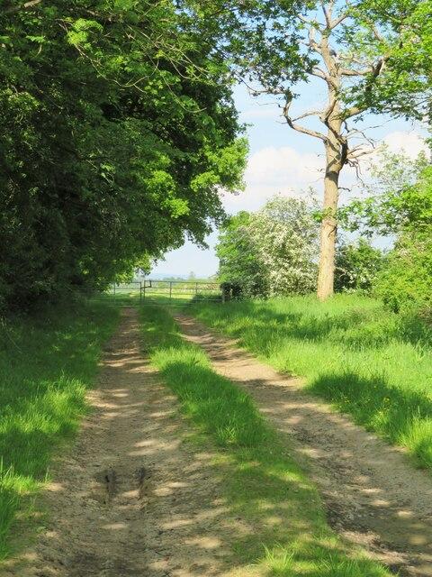 Farm track off Eryholme Lane