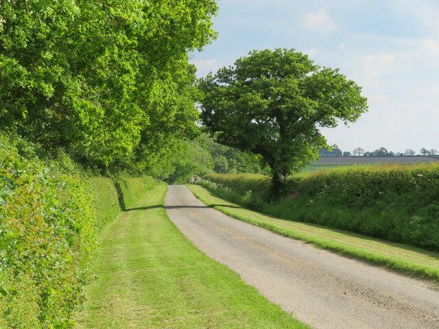 Eryholme Lane