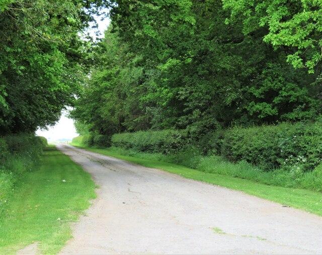 Lane to Eastfields Farm