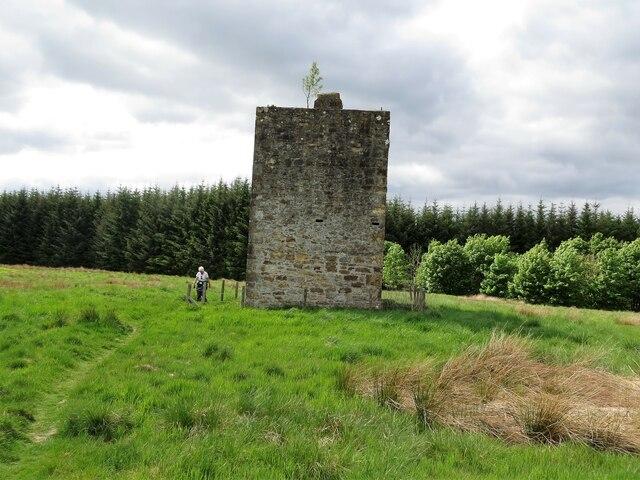 Tower in Deepsyke Forest