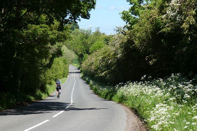 Bidden Road, South Warnborough
