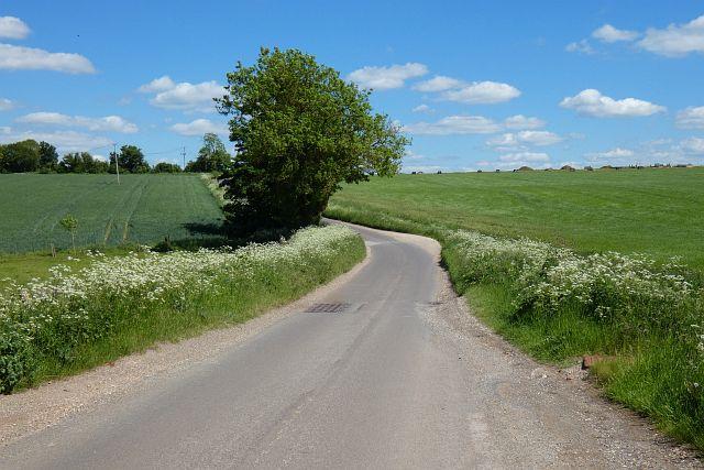 Road and farmland, Upton Grey