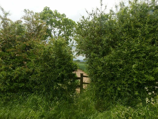 Footpath To Quinton's Orchard