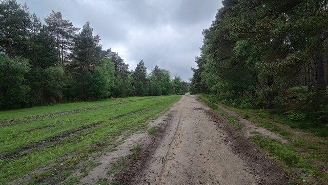 Path near Wishmoor Cross
