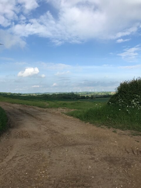 Bridleway view