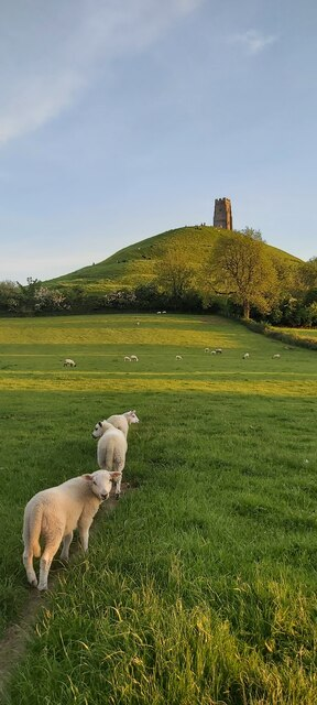 Leading the way to Glastonbury Tor