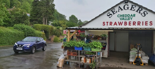 Seager's Strawberry Shop