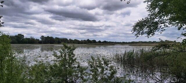 Decoy Lake at Shapwick Heath National Nature Reserve