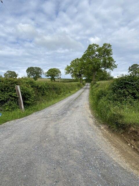 Track to Cefnllwydcoed