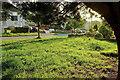 SX8865 : Torridge Avenue, Shiphay by Derek Harper