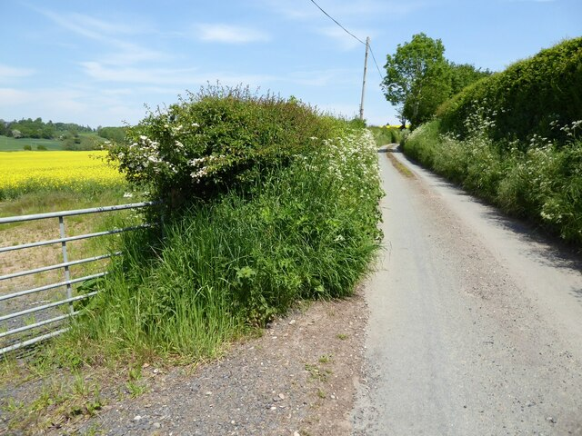 Country road to Haughton