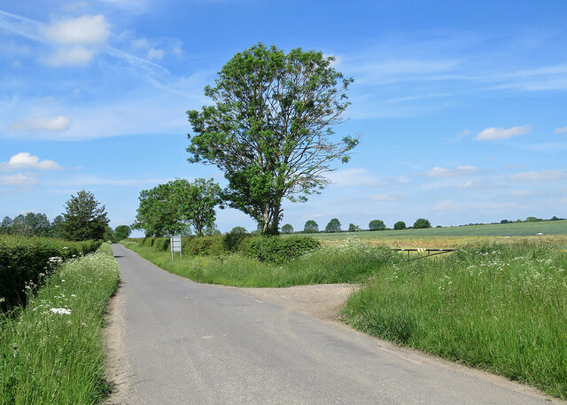 Comberton: Branch Road on a June morning