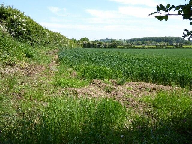 Farmland and a footpath