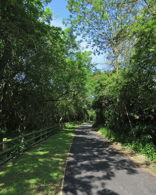 The reopened Coton Path