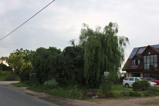 Garden on East Road, East Mersea