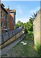 TL4458 : Slipway, sleeping swans and cygnets and Garret Hostel Bridge by John Sutton