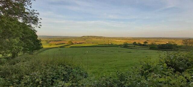 Fields near Norwood Park Farm