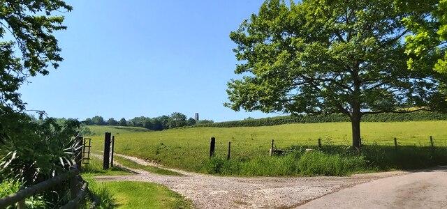 Towards Glastonbury Tor from Higher Wick Farm